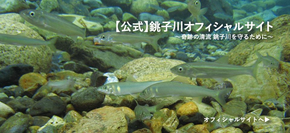 【公式】銚子川オフィシャルサイト